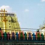 templo de kanchi pintado de colores tamil nadu