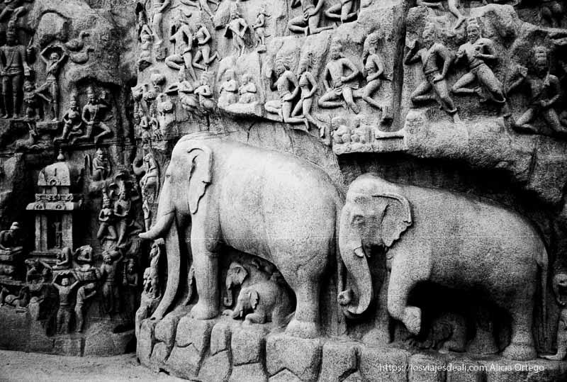 elefantes y dioses en roca excavada de mamallapuram tamil nadu