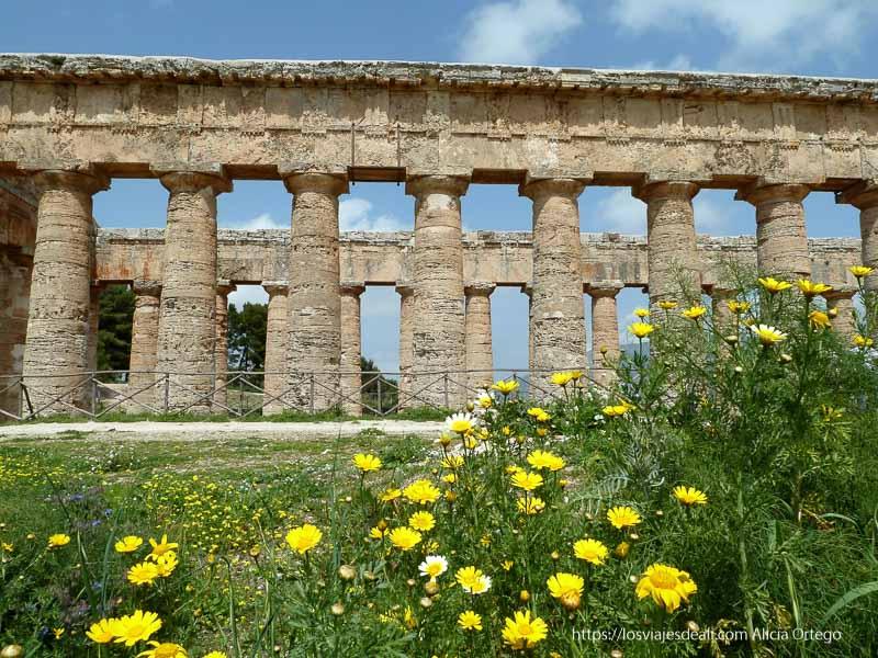 lateral del templo con flores amarillas en primer plano