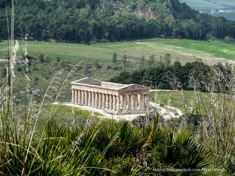 templo principal de segesta en medio del campo