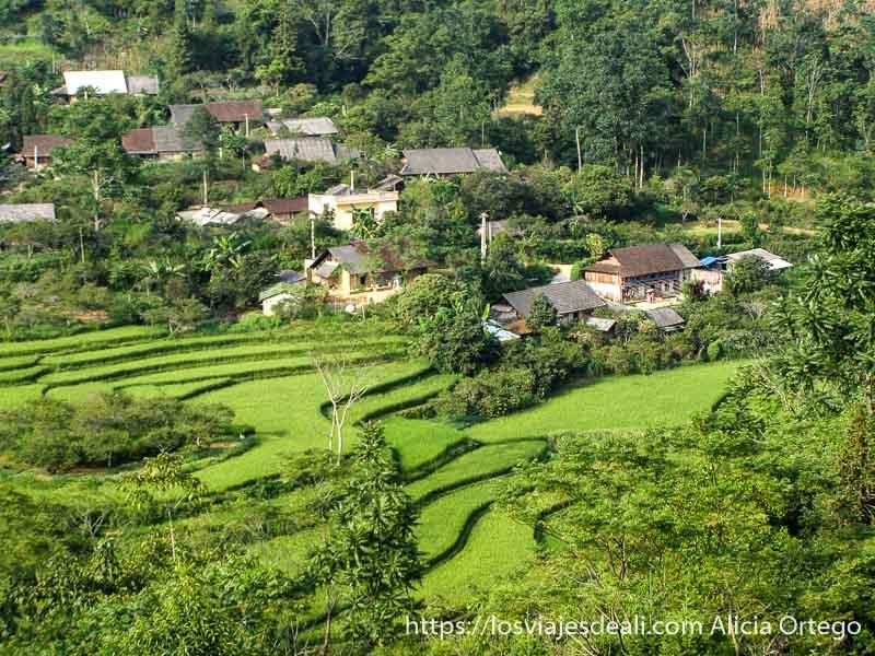 campos de arroz y pueblo en el norte de vietnam