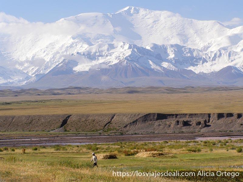 campos verdes y pico lenin con nieve campo base del pico lenin