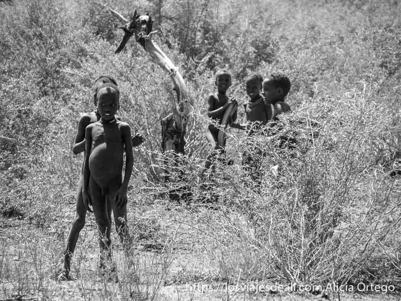 niños de la tribu dasanech mirándonos y riéndose entre matorrales
