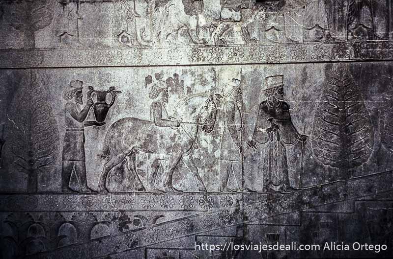 bajorrelieves mostrando personas que llevan regalos al rey en persépolis viaje a irán