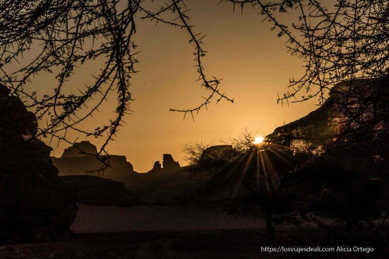 amanecer en el tadrart con ramas de acacias de pinchos viaje a Argelia