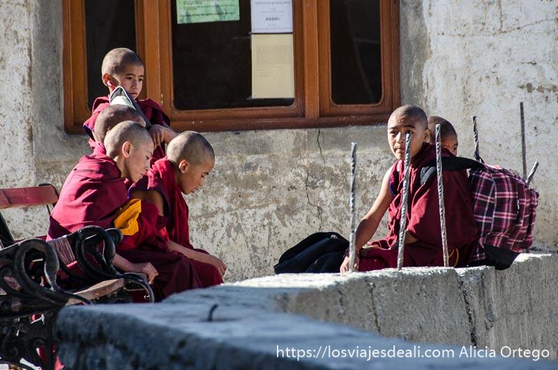niños monje con sus mochilas del colegio monasterio de lamayuru