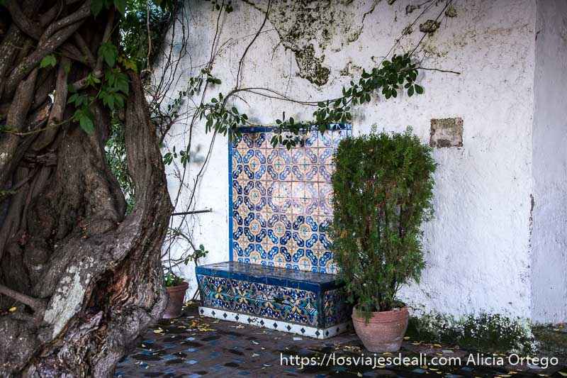 rincón de jardín con banco revestido de azulejos con dibujos en colores azules escapada a ronda