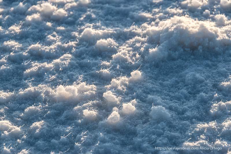 sal del suelo del salar con filamentos que parecen plumón