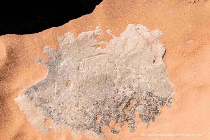 grabado de una gacela en la roca rodeada de arena en el sahara