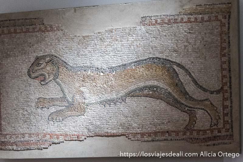 mosaico de una leona con las ubres visibles saltando en el museo nacional de beirut