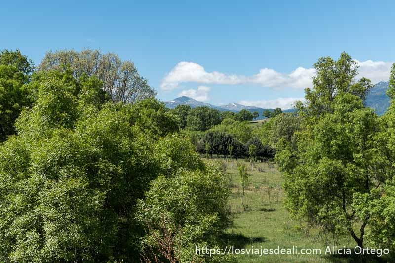 paisaje del valle de los neandertales en la ruta de 1 día en el valle del lozoya