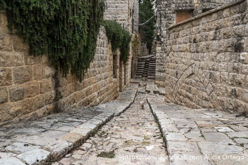 calle de deir el qamar toda de piedra con canal central para que discurra el agua en la excursión a los alrededores de beirut