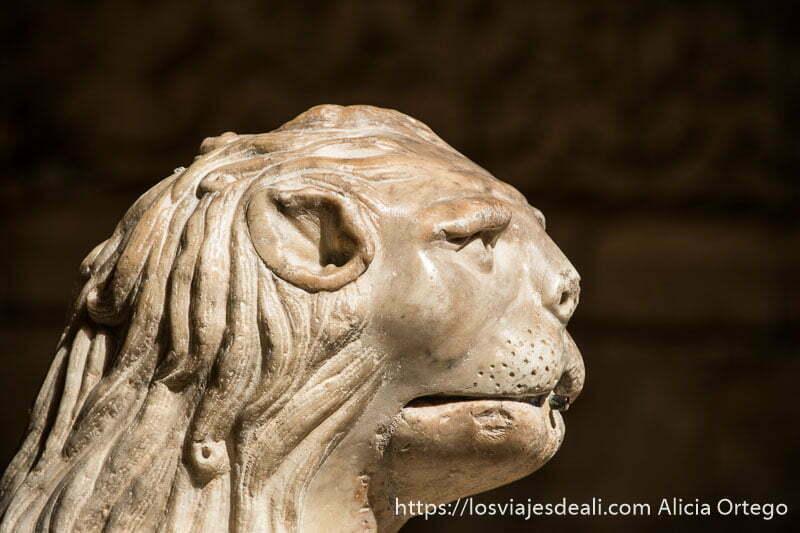 cabeza de animal mitológico en una fuente de belem