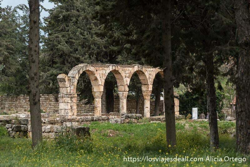 arcos soportados por columnas en aanjar en el valle de bekaa