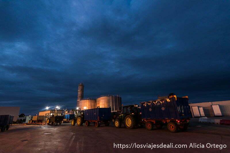la bodega más grande del mundo con tractores y remolques haciendo cola para descargar en la experiencia en la vendimia