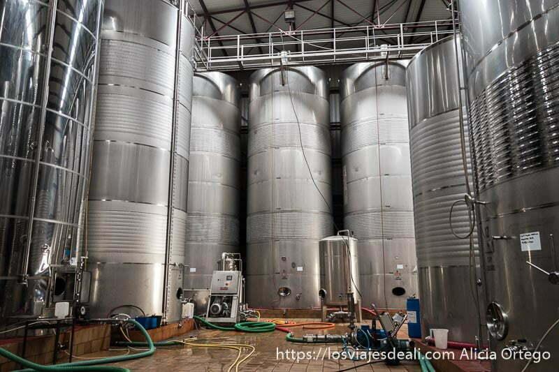 bodega con grandes contenedores de acero inoxidable experiencia en la vendimia