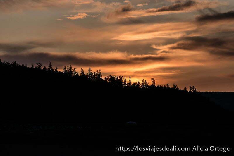 atardecer con nubes naranjas y perfil de montaña con árboles tipo abetos en negro