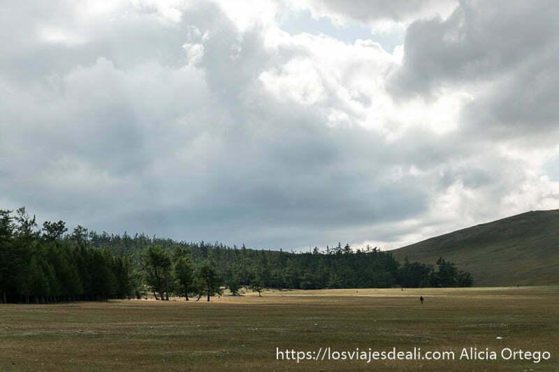 prado con bosque a la izquierda grandes nubes y una persona andando a lo lejos en un lugar de mongolia