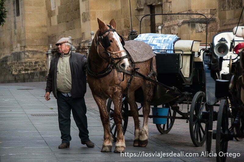 hombre cordobés con su caballo y coche para turistas junto a la mezquita visitar córdoba