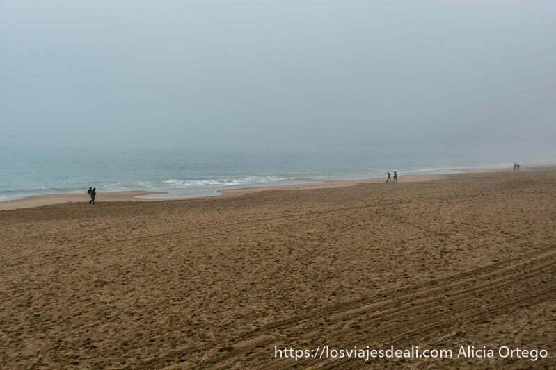 playa grande con parejas paseando junto al agua en la excursión a san juan de luz y biarritz
