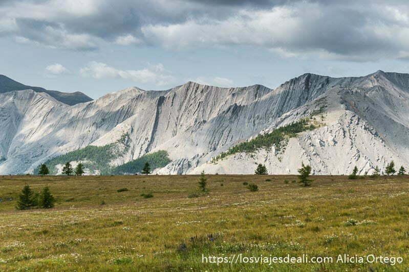 montañas de color gris ocupando todo el horizonte y delante un prado
