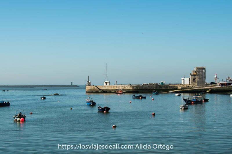 barcas de pesca en el agua con boyas alrededor y una plataforma de piedra donde está un antiguo faro en foz do douro