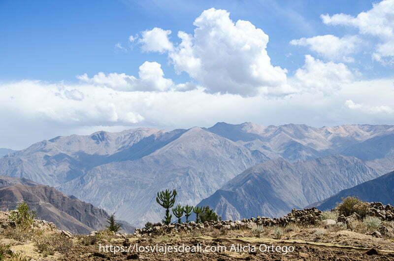paisaje del cañón del colca con horizonte lleno de montañas uno de los lugares maravillosos de Perú