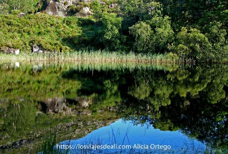 lago del parque nacional de Killarney con reflejo perfecto de vegetación en el agua, en forma de uve invertida