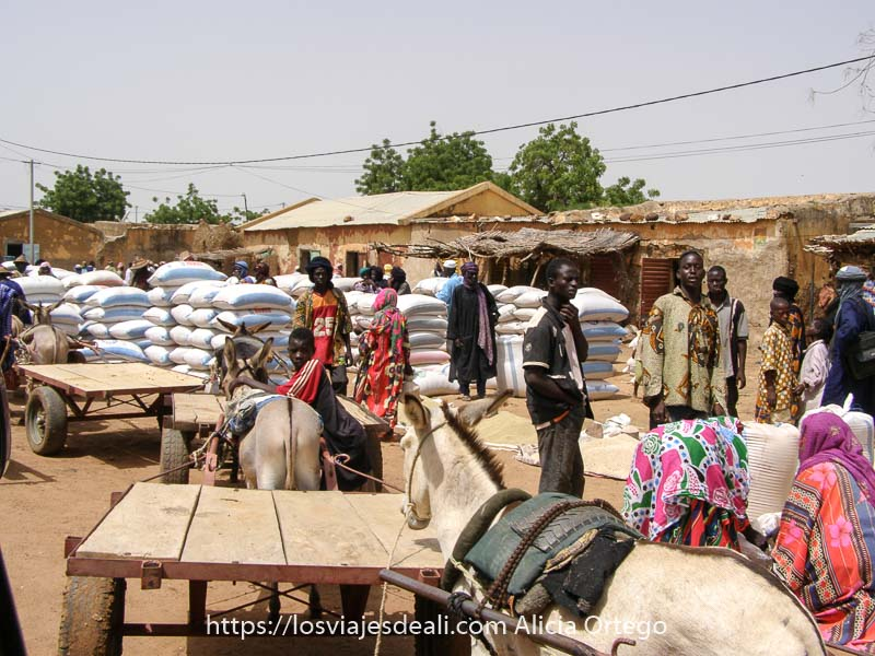 calle de gorom gorom llena de sacos enormes y carritos tirados por burros y algunos hombres entre ellos