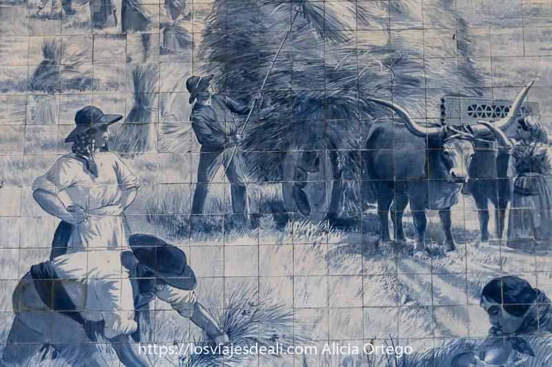 escena de siega con carro de paja tirado por un buey de grandes cuernos y un hombre agachado segando en los azulejos de la estación de são bento