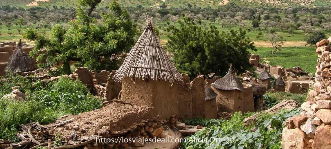 fotos de Mali: pueblo dogón con sus casas de barro y techos de paja
