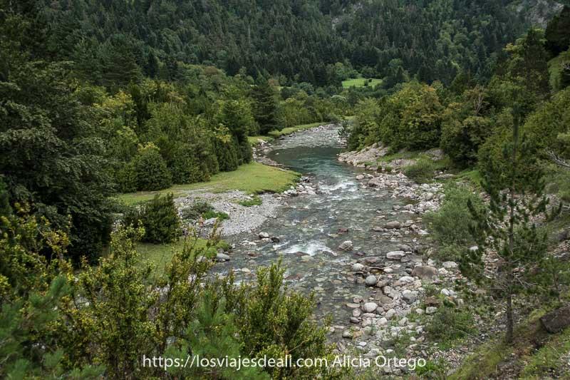 río Ara haciendo curvas entre bosques y prados en el Valle de Bujaruelo