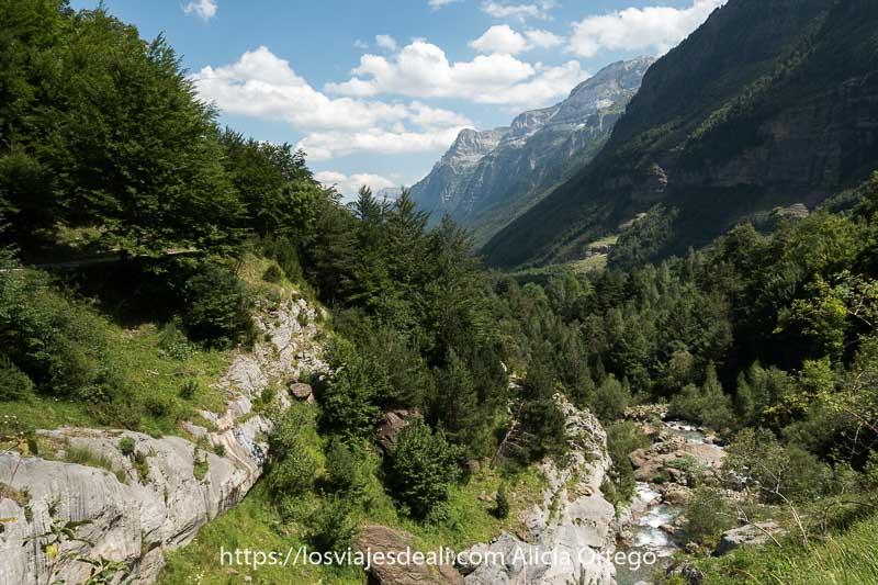 vista del Valle de Pineta desde la ruta de vuelta con bosques de abetos y pinos y las tres marías al fondo