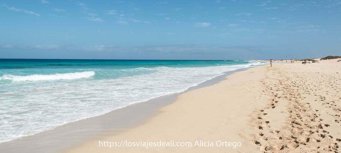playa kilométrica con mar color turquesa en Fuerteventura