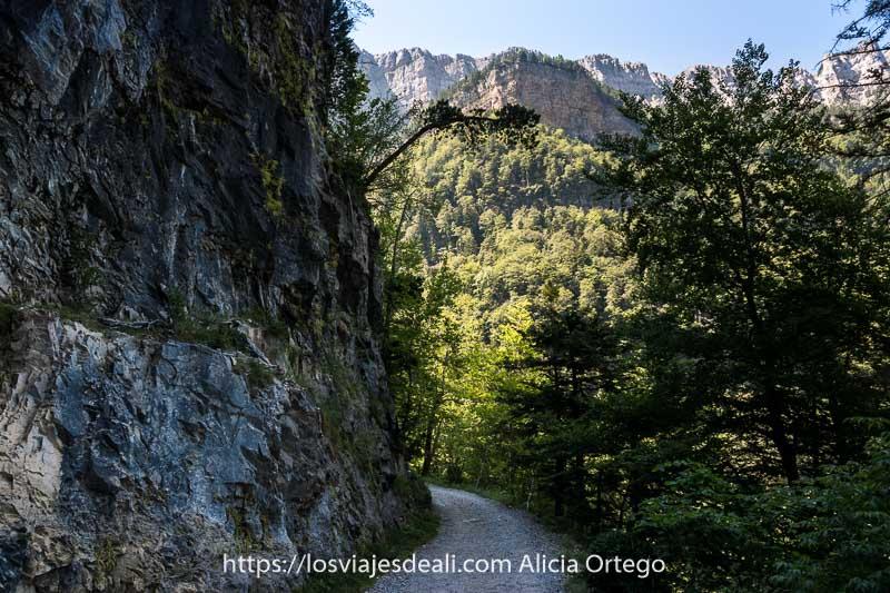 camino junto a gran pared de roca a la izquierda y bosques a la derecha y de frente