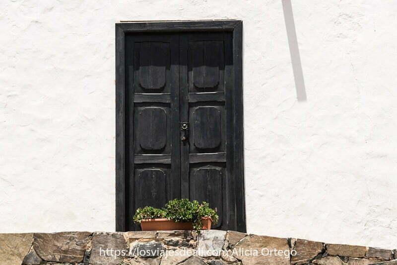 puerta de madera negra con seis cuarteronas y una maceta con planta verde delante