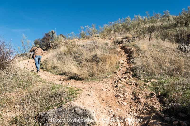 camino de subida a las cárcavas con un caminante con bastones que permite apreciar la pendiente