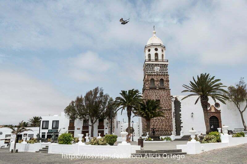 iglesia de teguise con torre de piedra volcánica y campanario blanco y una paloma volando