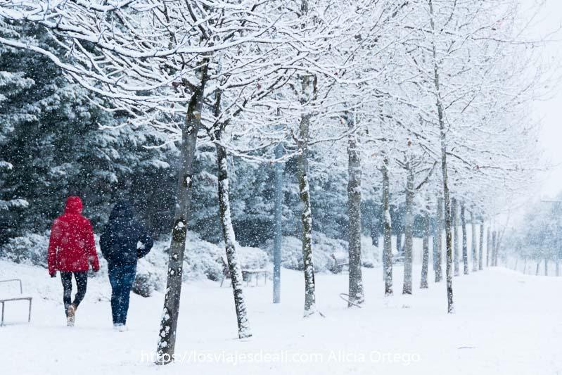 dos personas caminan en medio de la nevada junto a fila de árboles una con chaqueta roja