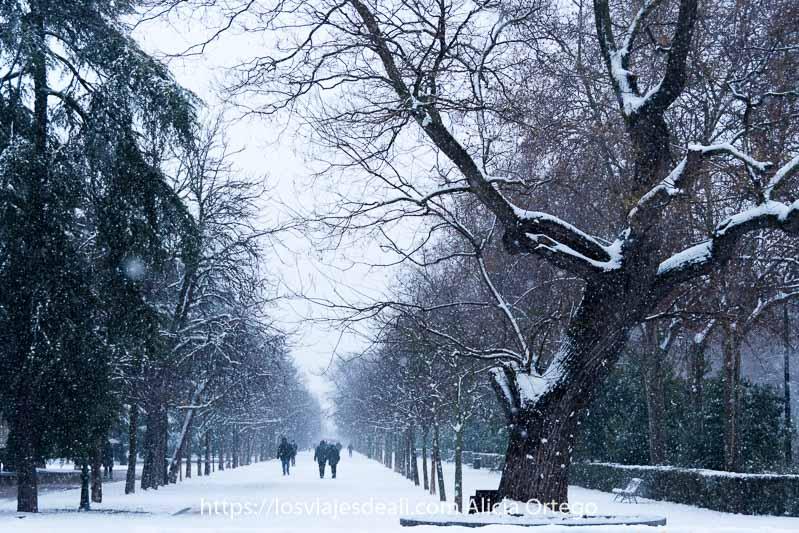paseo de el retiro lleno de nieve en madrid