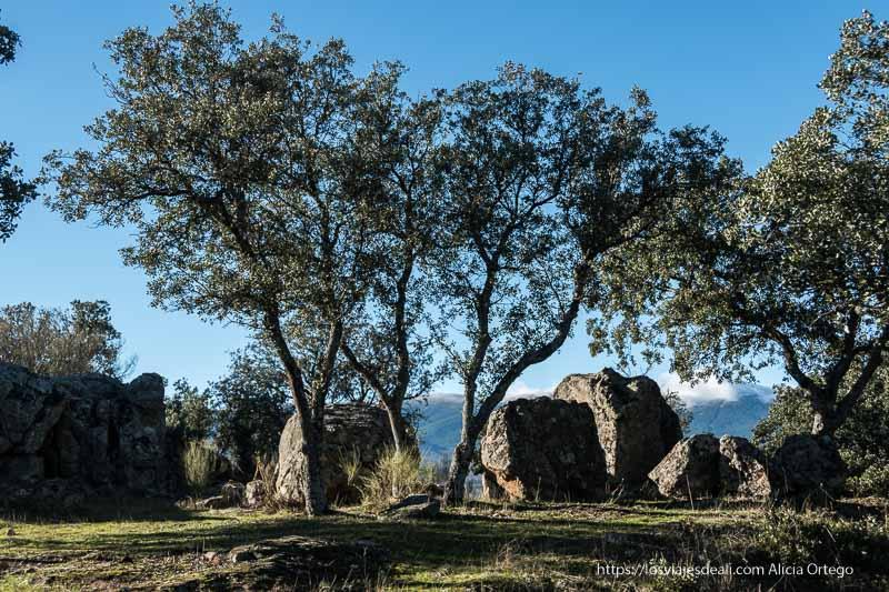 paisaje de rocas y encinas o robles en el mirador
