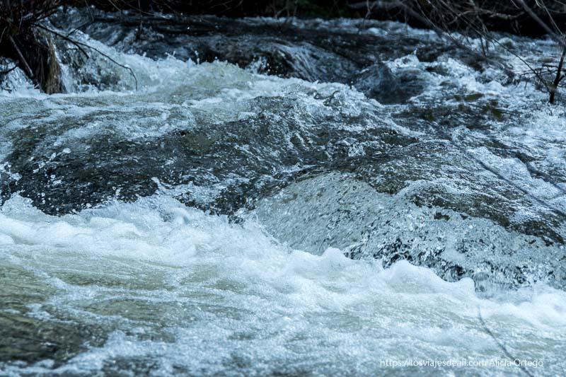 aguas del arroyo de canencia corriendo rápidas entre piedras y ramas