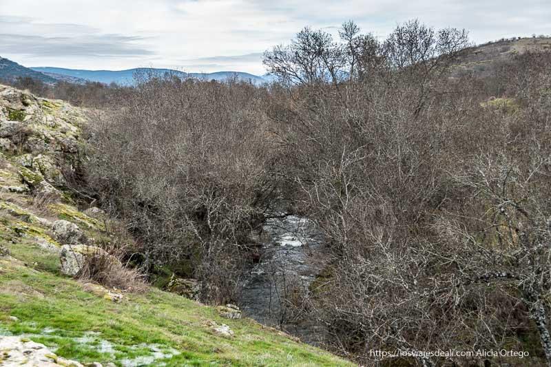 arroyo de canencia entre árboles y orilla en pendiente con hierba verde