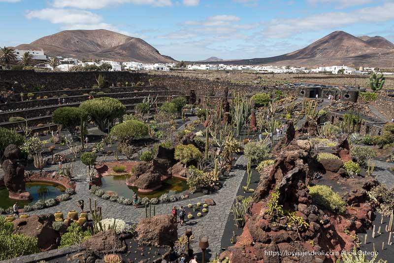 vista del Jardín de cactus de Lanzarote desde lo alto con un pueblo blanco más allá y dos volcanes al fondo