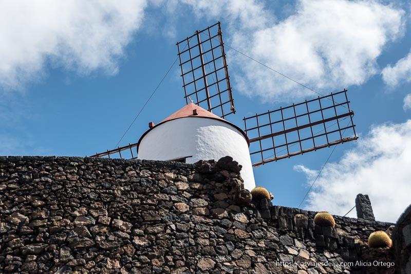 molino de viento pintado de blanco con grandes aspas de madera visto desde abajo