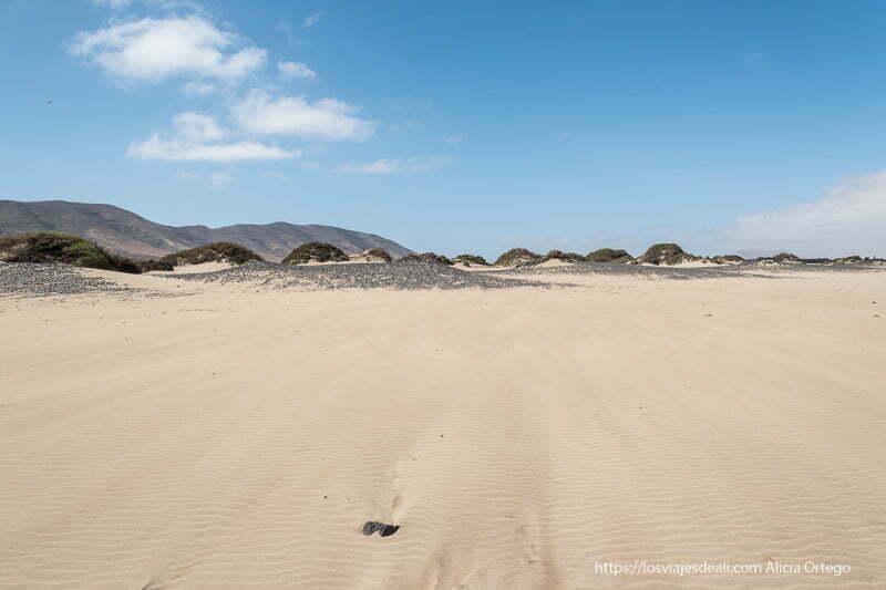 dunas con matorrales y volcanes detrás