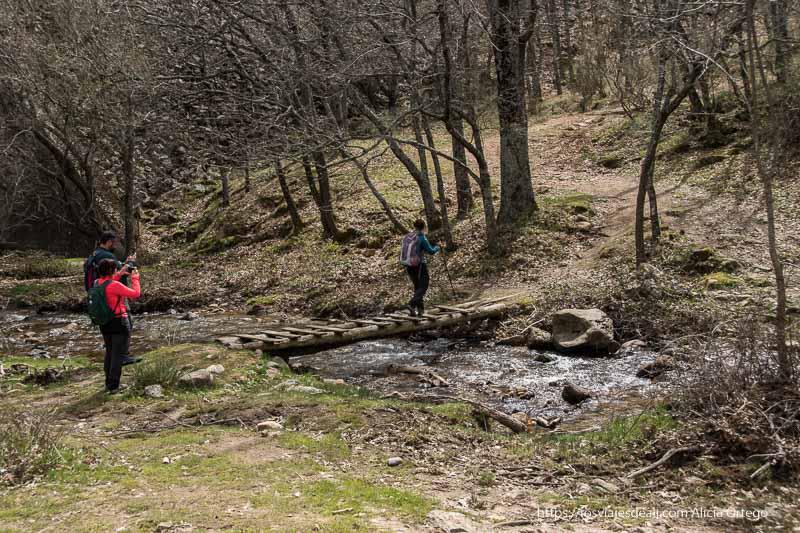 cruzando puente de troncos y tablas sobre un arroyo