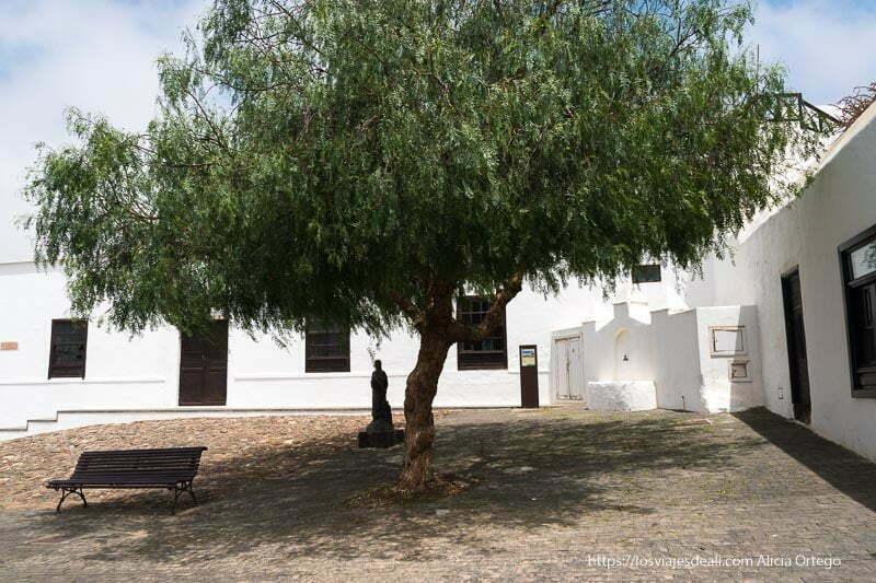 plaza de Teguise con gran árbol de hojas verdes, una fuente en una esquina y una pequeña estatua