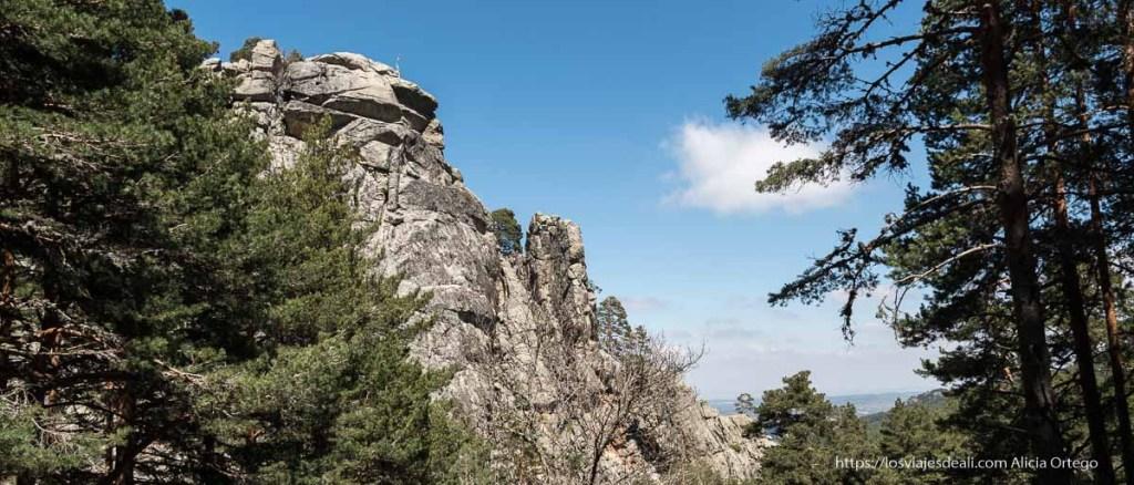 rocas entre pinos ruta puerto de Navafría