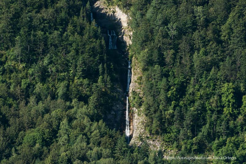 cascadas bajando entre bosques en el valle de pineta